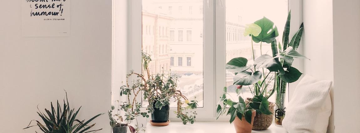 Fényes szoba a jó minőségű képek készítéséhez